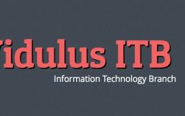 Vidulus ITB
